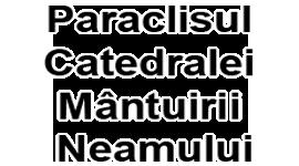 voluntarii paraclisului catedralei mantuirii neamului